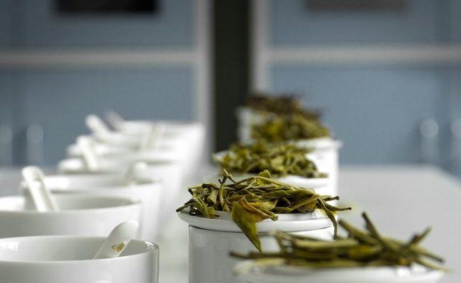 les jardins d'aphrodite thé